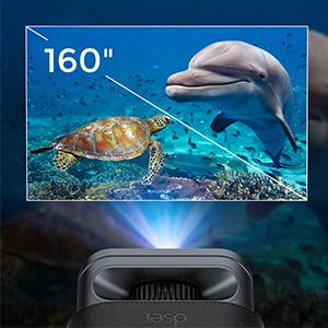 """160"""" big screen"""