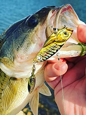 Catch Co 10,000 Fish Death Stalker Blade Bait Bass Fishing Lure