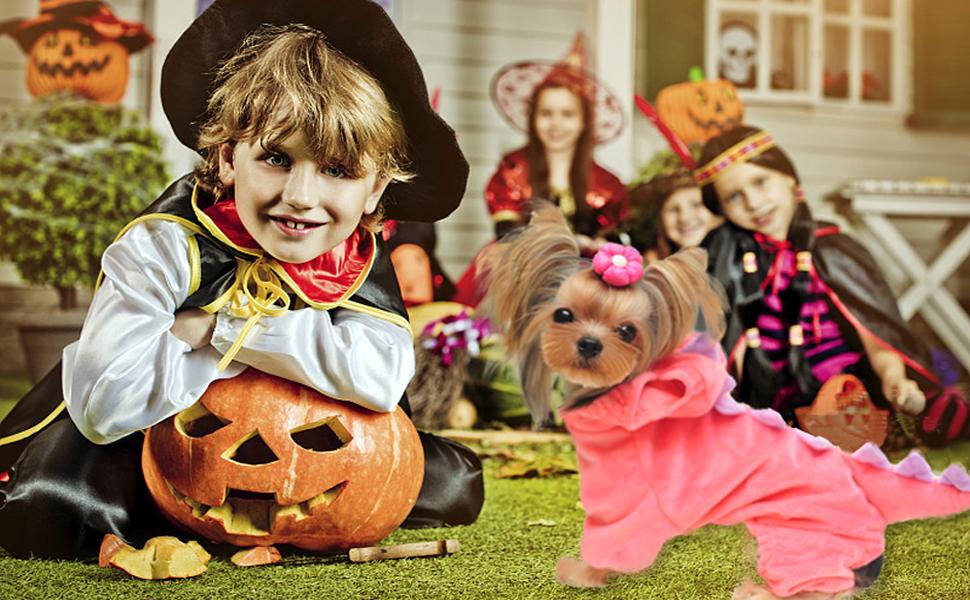Halloween Costume for Pet Funny Dog Cat Dinosaur Costumes Pet Plush Hoodies