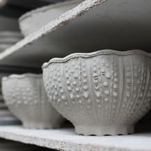 Costa Nova Stoneware Ceramic