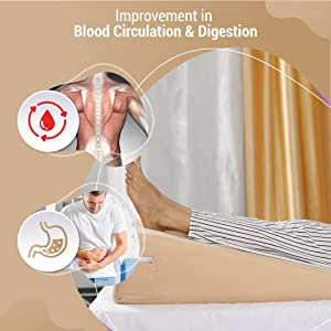 improve blood circulation digestion