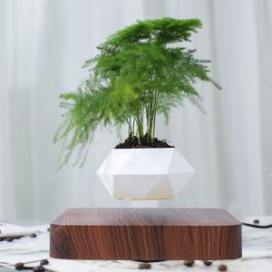Magnetic levitation flowerpot
