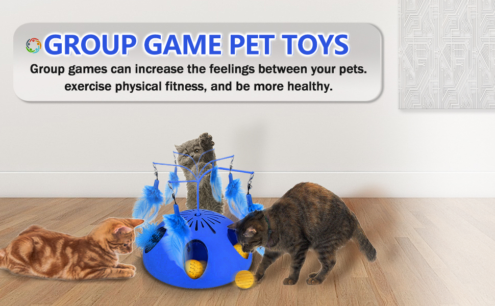 group game cat toy