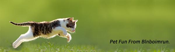 Blnboimrun cat tunnel toy