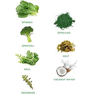 Spinach Kale Spirulina Greens Powder
