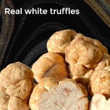 Real white truffles