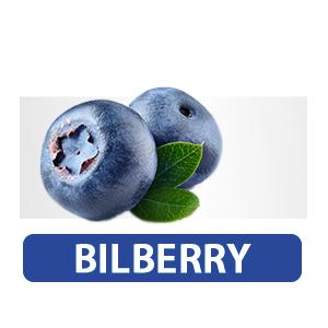 BILBERRY SUPPLEMENT