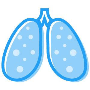 FoodMarble Pulmones
