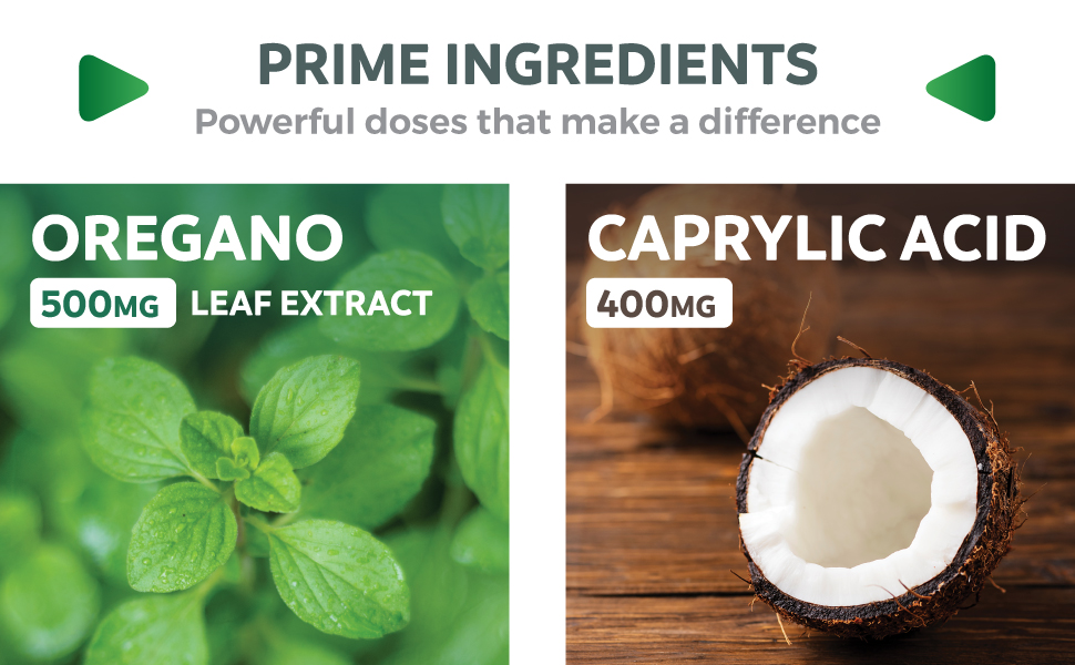 Oregano Leaf Extract & Caprylic Acid Supplement