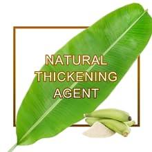 Thickening agent healthy gluten free vegan