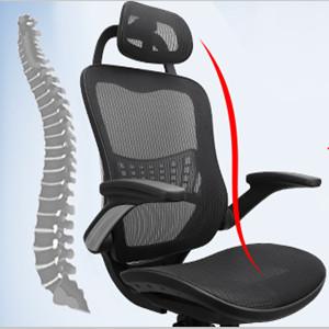 Ergonomic backrest and lumbar support