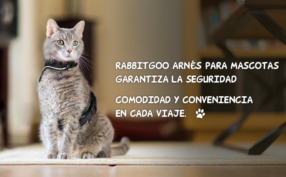 rabbitgoo Arnes Gato y Correa, Arnés Gato Pequeño Ajustable Cuello ...