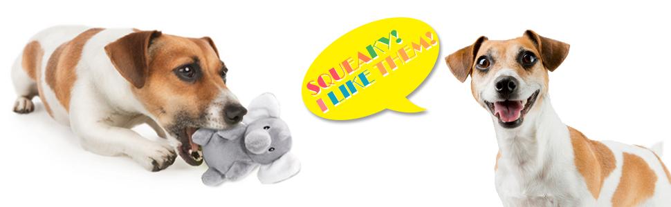 dog teething toys