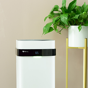 hepa filter air purifiers for home or office