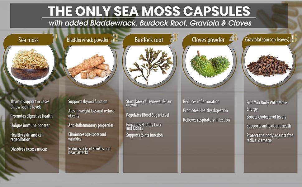 Triplmoon sea moss capsules