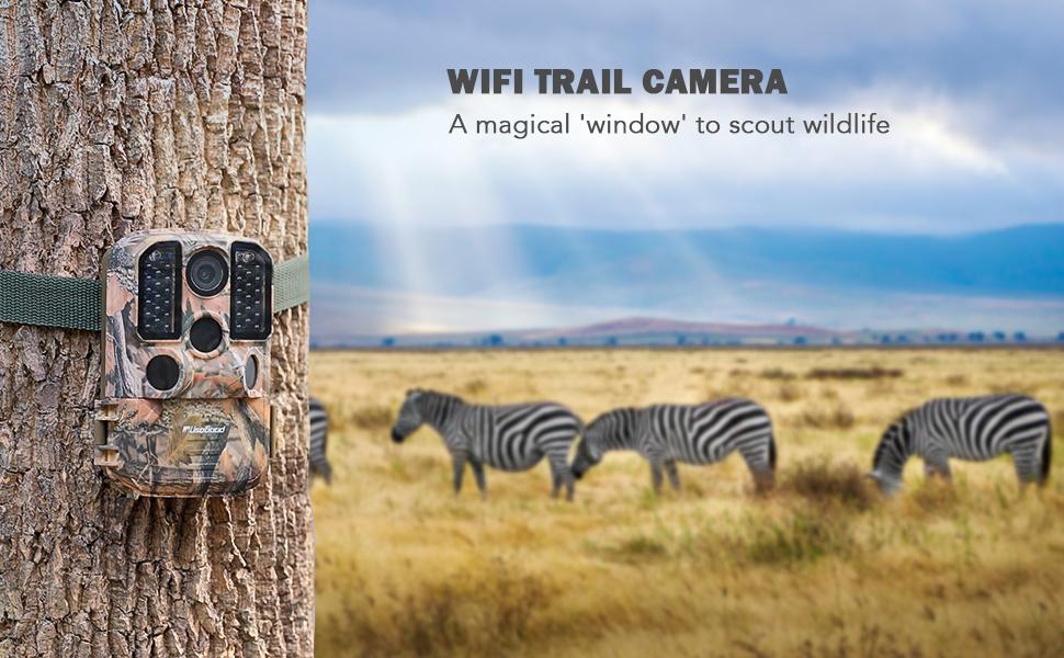 outdoor wildlife camera