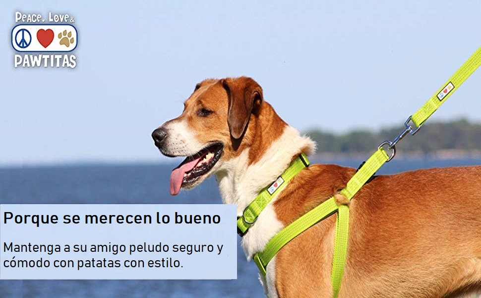 Pawtitas Adiestramiento Arnés para Perro o Cahorro Reflectante ...