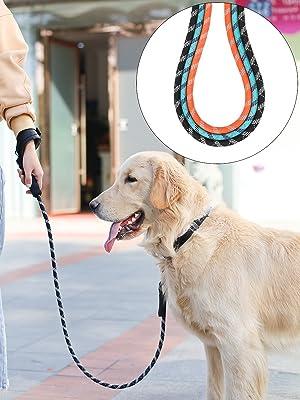 laisse chien orange main libre