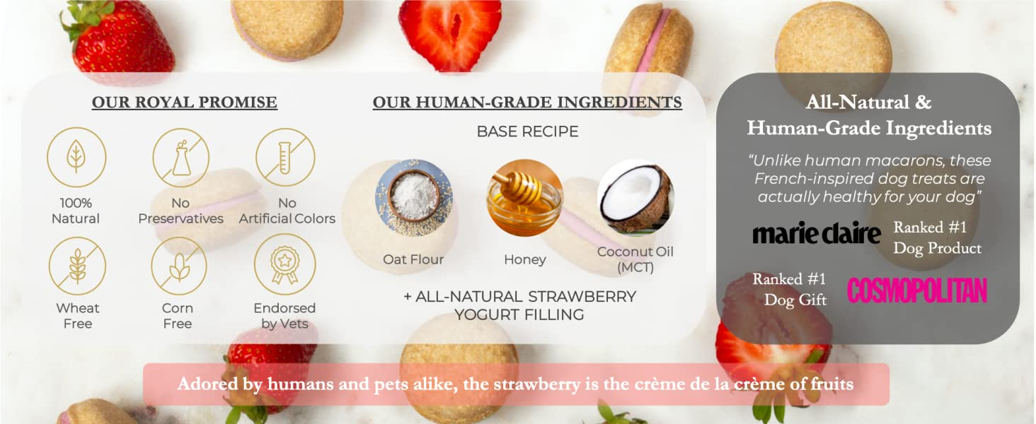 Dog Macarons macaroons strawberry treats biscuit healthy all-natural USA Handmade Honey Coconut vets