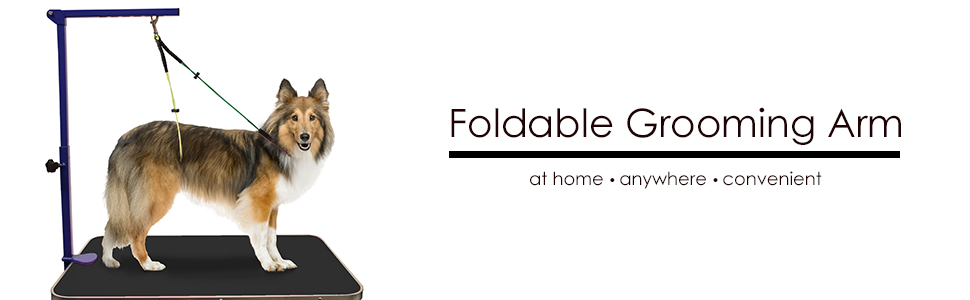 Downtown Pet Supply Foldable Grooming Arm