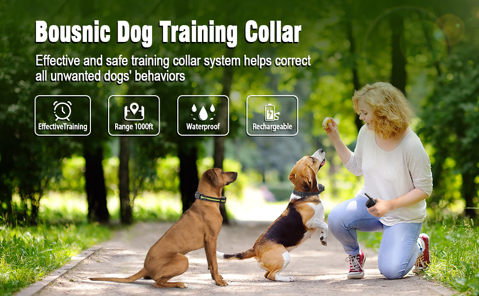 Bousnic Dog Training Collar for 2 dogs