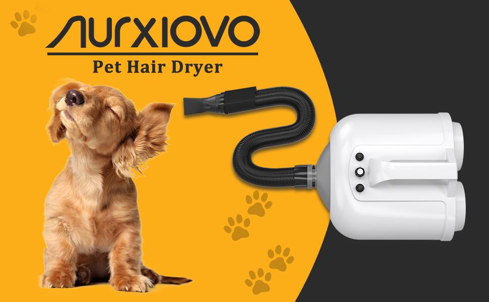 professional dog hair dryer