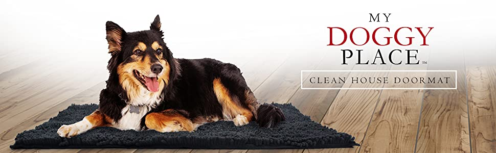 dog, house, mud, mat, rug, absorbent, door, wash, dirt, water, dry, doggy