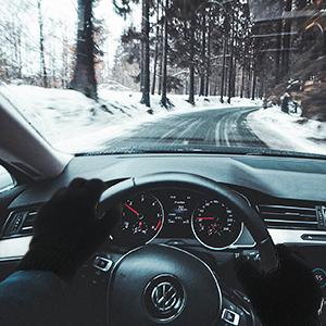 Winter Gloves 6