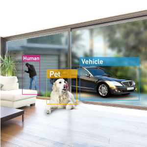 object detection human vehicle pet dog cat birds home security