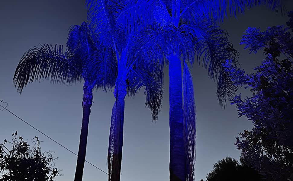 blue palm trees using our par 18x18w with 45 degree