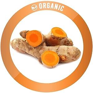 organic ingredients non gmo vegan plant based natural tested pure keto golden milk powder turmeric