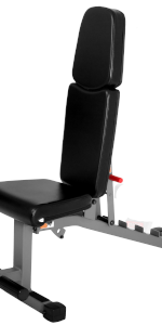 Adjustable Flat, Incline, Decline bench with dual rail system, levels with degrees