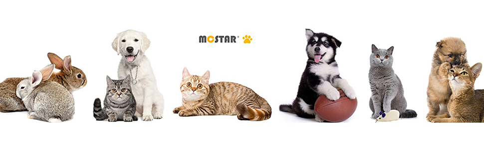 MC Star