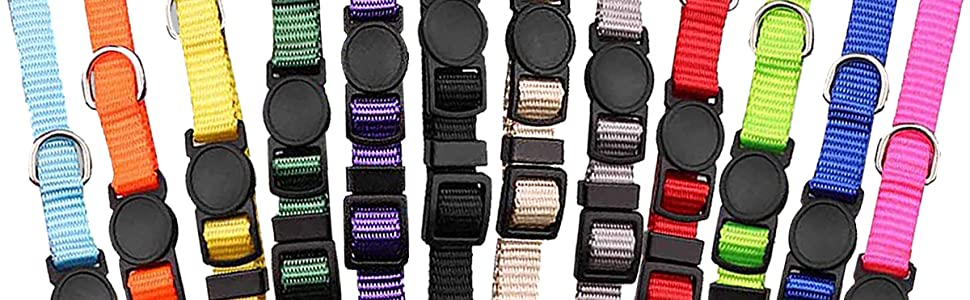 Assorted Colors Plain & Identification Collars with 2 Record Keeping Charts
