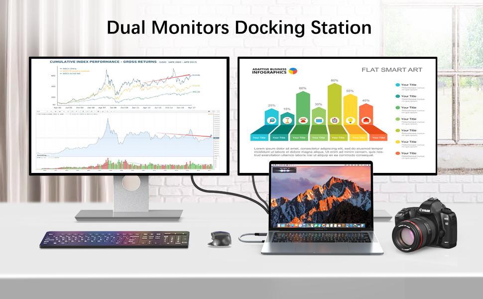 Dual Monitors Docking Station