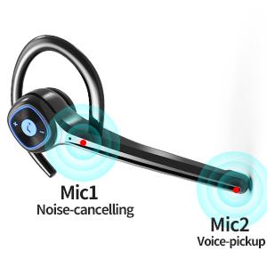 CVC8.0 Dual-Mic Noise Cancelling