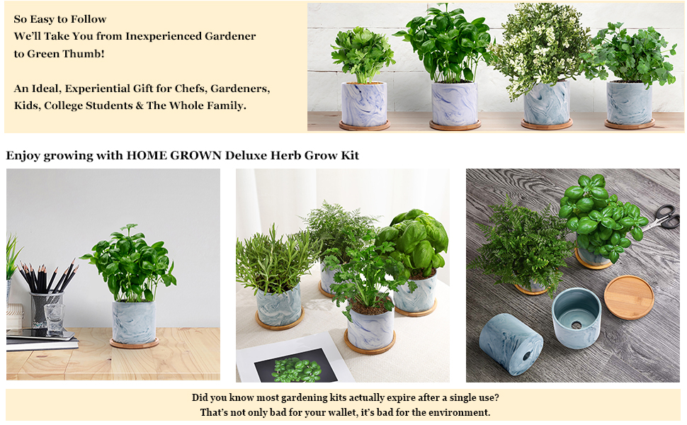 herb kit, herbs, herb seed, ceramic pots