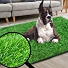 dog grass pad