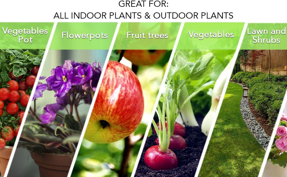 vegetables, fruit frees, lawn