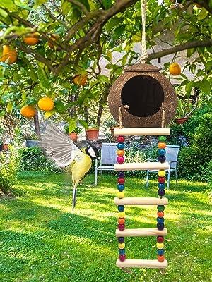 parakeet nesting boxwith ladder