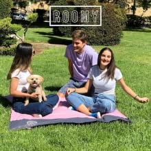 Three teenagers and a dog at a park on the pink ECCOSOPHY Beach Blanket