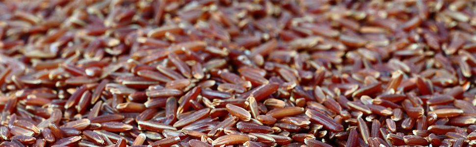 riso rosso, integratori, colesterolo