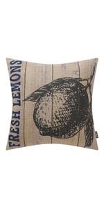 Trendin Lemon Pillow Cover
