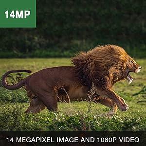 trail camera 14mp