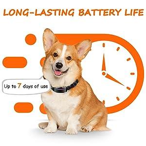 shock collar for barking bark collars for medium dogs anti barking collar for dogs