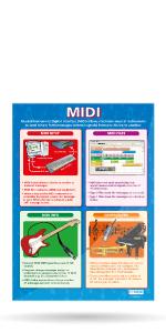Midi Poster