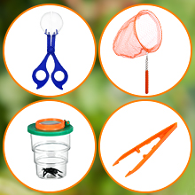Bug Catcher Kit