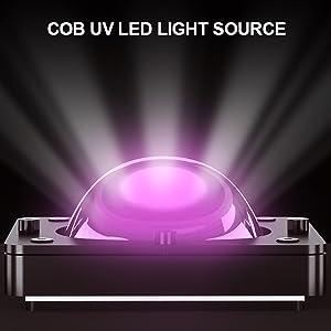 COB UV LED Light Source
