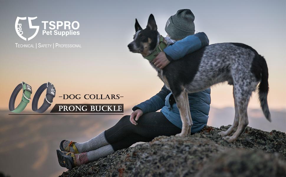 PIN BUCKLE DOG GCCCCOLLAR
