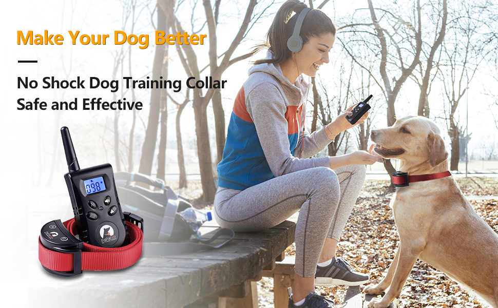 Training Your Dog Better No Shock Dog Training Collar Safe and Effective